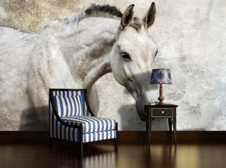 Wallpaper for bedroom Horse